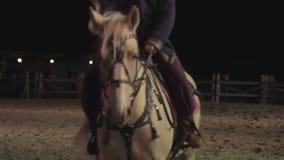 在晚上守卫在马背上检查城市疆土,做回合的守卫 影视素材