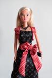在晚上穿戴的芭比娃娃玩偶与红色框格 库存图片