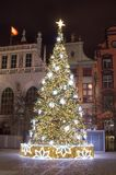 在晚上观看一棵美丽的圣诞树 免版税库存图片