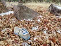 在晚冬森林找到的失去的鞋子 免版税库存图片