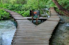 在普利特维采湖群国家公园的分叉的木走道在克罗地亚 免版税图库摄影