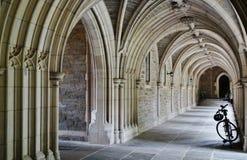 在普林斯顿大学的哥特式曲拱 库存照片