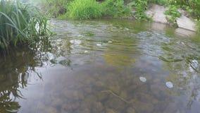 在晴天照相机运动的一点水小河 股票录像