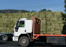 在智利路的卡车 库存照片