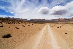在智利altiplano的沙子路 免版税库存照片
