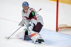 在曲棍球赛期间的Kristers Gudlevskis,在队拉脱维亚和队加拿大之间 免版税库存照片