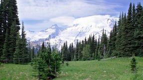 在更加多雨的原野附近的高山挂接 库存图片