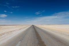 在最基本的海岸沙漠的盐路 免版税库存照片