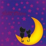在月亮前面的蜜月猫 免版税库存照片