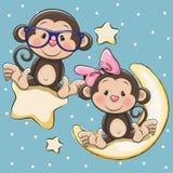 在月亮和星的恋人猴子 库存照片