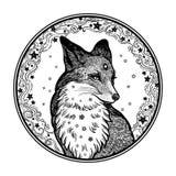 在月亮和星的背景的Fox在vinatge样式 免版税库存图片