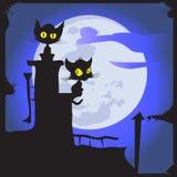 在月亮的猫 免版税库存图片