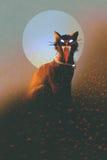 在月亮的背景的邪恶的猫 库存图片