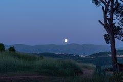 在月光下的夜空 免版税库存图片