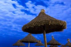 在月光海滩的棕榈遮阳伞 库存照片