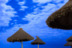 在月光海滩的棕榈遮阳伞 免版税库存照片