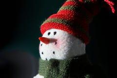 在月光的冬天雪人 免版税库存图片