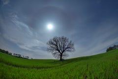 在月光的托斯卡纳风景 库存图片