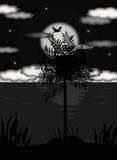 在月光的Palmtree在热带海岛 免版税库存照片