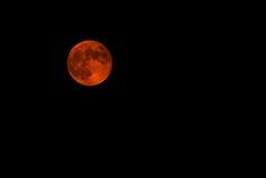 在月蚀的红色月亮 免版税库存图片