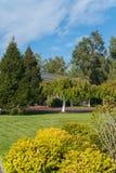 在有人行道的一个公园和落叶树和灌木种植的各种各样具球果 库存图片