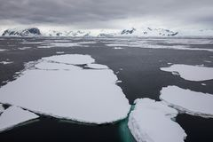 在有冰山的南极洲冰在海洋 免版税库存照片