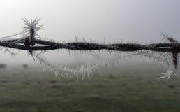 在有刺架线的篱芭的冰水晶 库存图片