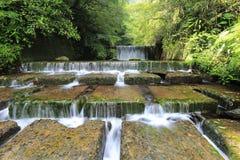在有发光通过豪华绿叶的阳光的一个神奇森林里冷却刷新的小瀑布 库存照片