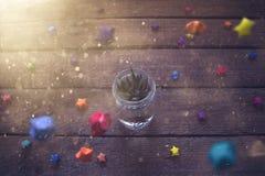 在有圣诞节装饰的罐种植的多汁植物 免版税库存图片