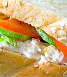 在有壳的mayonaise金枪鱼上添面包 图库摄影