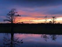 在有波纹的沼泽使日落陷入沼泽在水中 免版税图库摄影