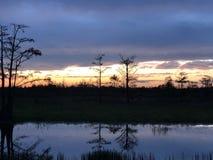 在有波纹的沼泽使日落陷入沼泽在水中 免版税库存照片