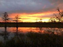 在有波纹的沼泽使日落陷入沼泽在水中 库存图片