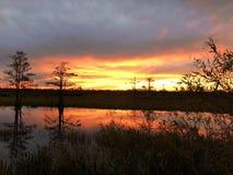 在有波纹的沼泽使日落陷入沼泽在水中 图库摄影