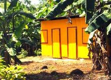 在有烘干昆因小山的洗衣店的密林镀锌金属板房子 免版税库存图片