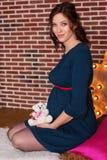 在有玩具熊的演播室塑造孕妇 免版税图库摄影