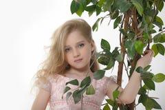 在有玫瑰的一件桃红色礼服 免版税库存图片