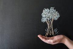在有白垩的黑板画的树 图库摄影