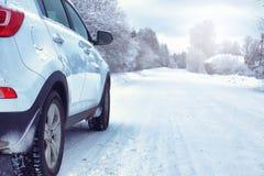 在有积雪的原野的冬天森林里环境美化 免版税库存照片