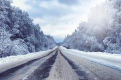 在有积雪的原野的冬天森林里环境美化 图库摄影