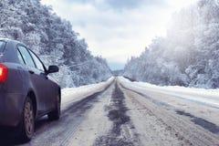 在有积雪的原野的冬天森林里环境美化 库存照片