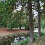 在有老树的北部德国,五颜六色的地方教育局环境美化 免版税库存照片