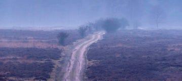 在有薄雾的冬天石南花风景的土路 免版税库存照片