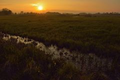 在有薄雾的富兰德flieds的难以置信的日落 免版税图库摄影