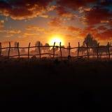 在有薄雾的日落的花田 库存图片