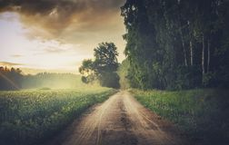 在有薄雾的日落的风景空的农村路 免版税库存图片