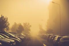 在有薄雾的早晨停放的许多汽车 库存照片