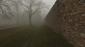 在有薄雾的有雾的自然的老城堡墙壁 影视素材