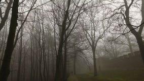 在有薄雾的有雾的自然的老城堡墙壁 股票视频