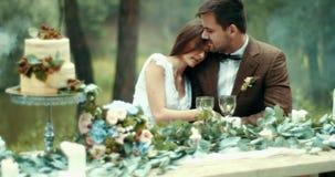 在有薄雾的森林有吸引力的敏感爱恋的夫妇的浪漫晚餐在葡萄酒布料体贴拥抱在桌上 影视素材